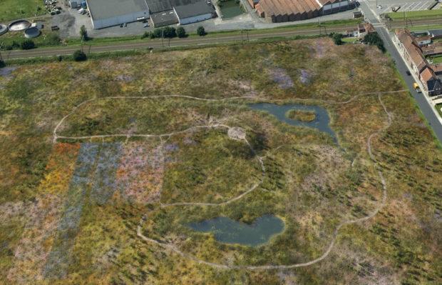 Het braakliggende terrein heeft zich kunnen ontwikkelen als tijdelijke natuur: een pioniersvegetatie is aanwezig.