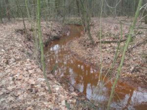 Ecologisch beekherstel