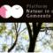 logo Platform Natuur in de Gemeente